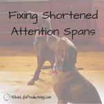 Fix Short Attention Spans