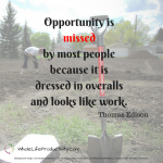 Shareable: Work and Opportunity